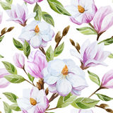 Magnolia pattern Royalty Free Stock Image