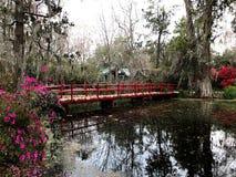 Magnolia Plantation. The gardens at Magnolia Plantation in Charleston, South Carolina Stock Photo