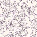 Magnolia's Royalty-vrije Stock Afbeelding