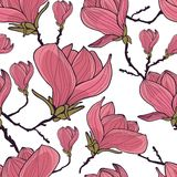 Magnolia seamless pattern Royalty Free Stock Image