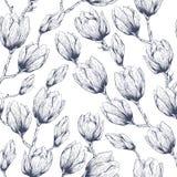 Magnolia seamless pattern Royalty Free Stock Photo