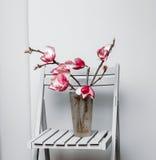 Magnolia su una sedia fotografia stock