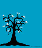Magnolia Tree. With white flowers against a blue background (vector Royalty Free Stock Images