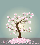 Magnolia tree. Vector illustration of a magnolia tree in bloom Royalty Free Stock Image