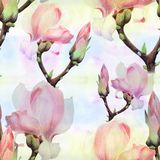 Magnolia. Watercolor. Seamless pattern. Branches are flowering. Wallpaper. royalty free stock photos
