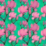 Magnolia. Watercolor. Seamless pattern. Branches are flowering. Wallpaper. royalty free stock photography