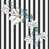 Magnoliabroderi, vektor, illustration royaltyfri illustrationer