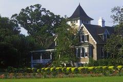 Magnoliakoloni och trädgårdar, äldst offentlig trädgård i Amerika, charleston, SC Royaltyfri Bild