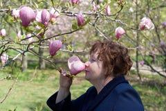 magnoliapensionärkvinna fotografering för bildbyråer
