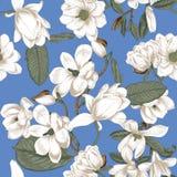 magnolias Blommor bakgrund blommar den seamless vektorn bostonian Vår blommas trees Grönsakmodell Trädgård royaltyfri illustrationer