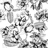 Magnolias. Flowers. Vector seamless background with flowers. Botany. Spring. Blooming trees. Vegetable pattern. Garden. Magnolias. Flowers. Vector seamless royalty free illustration
