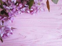 Magnolie romantisch auf einem hölzernen Hintergrund stockfotografie