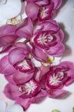 Magnolien auf der Hochzeitstorte Stockbild