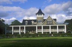 Magnoliowa plantacja i ogródy, stary jawny ogród w Ameryka, Charleston, SC Zdjęcia Stock