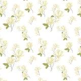 Magnoliowa seamlless deseniowa cyfrowa klamerki sztuki akwareli kwiatów yellor kwiatu ilustracja kwitnie ilustrację na białym tle ilustracja wektor