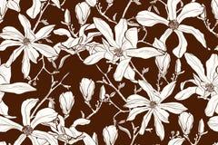 Magnoliowego kwiatu brązu sepiowy kontur wiosna kwiat tło bezszwowy wektora ilustracji