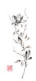 Magnoliowy ślimacznica Japońskiego stylu sumi-e atramentu oryginalny obraz royalty ilustracja