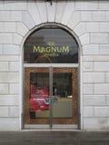 magnum Arkivbild