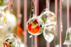 Mago de la Navidad Fotografía de archivo