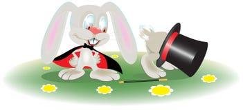 Mago del coniglio Immagine Stock Libera da Diritti
