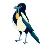 Magpie with medal. Vector image of a Magpie with medal Royalty Free Stock Photos