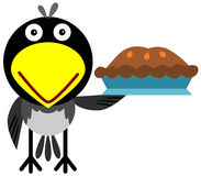 Magpie with a pie Stock Photo