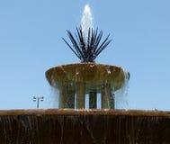 Maguey fontanna Fotografia Royalty Free