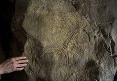 Magura jama w Bułgaria Prehistoryczni obrazy na skale Fotografia Royalty Free