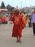Maha Kumbh Mela 2015 Royaltyfri Fotografi