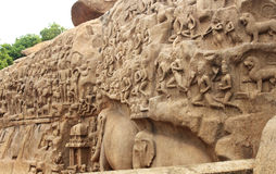 Mahabalipuram  sculpture Royalty Free Stock Image