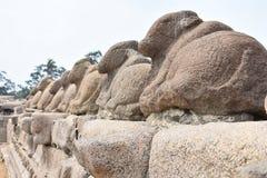 Mahabalipuram skulpturer i tempel royaltyfri fotografi