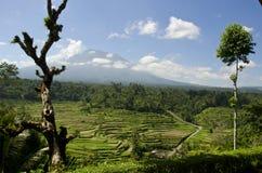 Mahagiri Volcano Bali. Volcano Mahagiri on Bali by Journey from Besakih Temple Stock Images