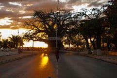 Mahajanga Royaltyfri Fotografi