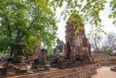 Mahathat di Wat, Ayutthaya, Tailandia Immagini Stock Libere da Diritti