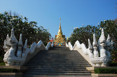 Mahathat Pakdee Prakat Temple, Thailand Royalty Free Stock Photo