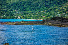 Mahe beach - Seychelles Stock Photo