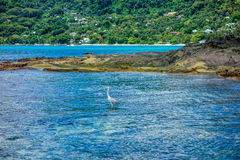 Mahe beach - Seychelles Stock Images