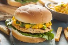 Mahi-Fisch-Sandwich mit Salsa lizenzfreie stockbilder