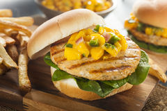 Mahi Fish Sandwich with Salsa. And Lettuce Royalty Free Stock Image
