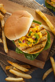 Mahi Fish Sandwich with Salsa Stock Photography