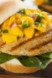 Mahi Fish Sandwich with Salsa Royalty Free Stock Photos