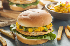 Mahi Fish Sandwich with Salsa Royalty Free Stock Photos