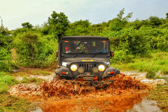 Mahindra Thar Offroading In The Jungle Stock Photo
