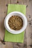 Mahlzeitwürmer in einer weißen Schüssel Stockfotografie
