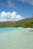 Maho Bay Beach, USVI. Maho Bay is one of the most pristine beaches in all of the Caribbean Stock Photos