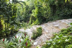 Mahoe Falls in Konoko Gardens, Jamaica royalty free stock photos