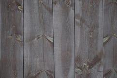 Mahogany wall background stock images