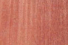 Mahogany wood Royalty Free Stock Images