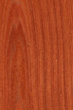 Mahogany (wood texture) Stock Photography