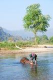 Mahout και ελέφαντας στοκ φωτογραφίες με δικαίωμα ελεύθερης χρήσης
